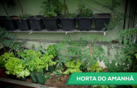 Horta do Amanhã