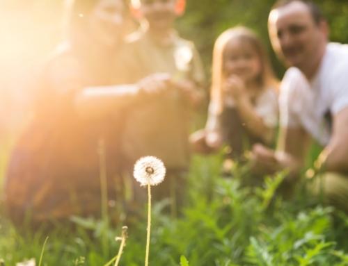 A vocação de servir a família e a Igreja
